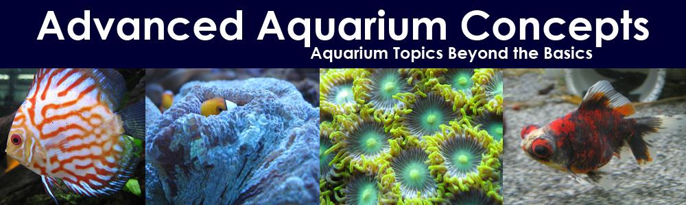 Advanced Aquarium Concepts
