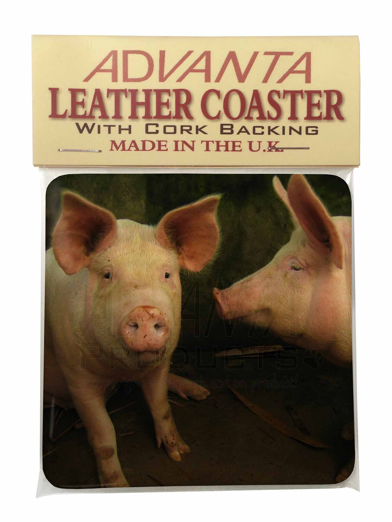 Pig Coasters Pigs In Sty Single Leather Photo Coaster Animal Breed Gift