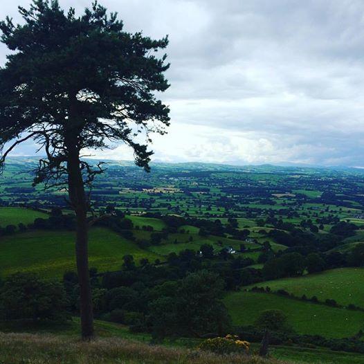 clywdian hills