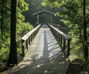 Pedestrian bridge at South Toledo Bend State Park.