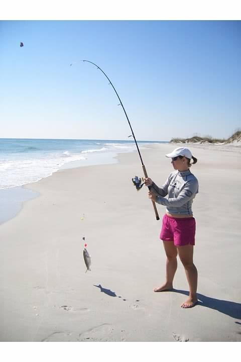 Smaller bluefish