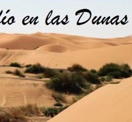 Desafío en las dunas 2014