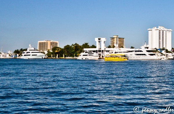 Water Taxi on the intracoastal ©pennysadler2013