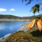 El Santuario Nacional de Ampay Perú