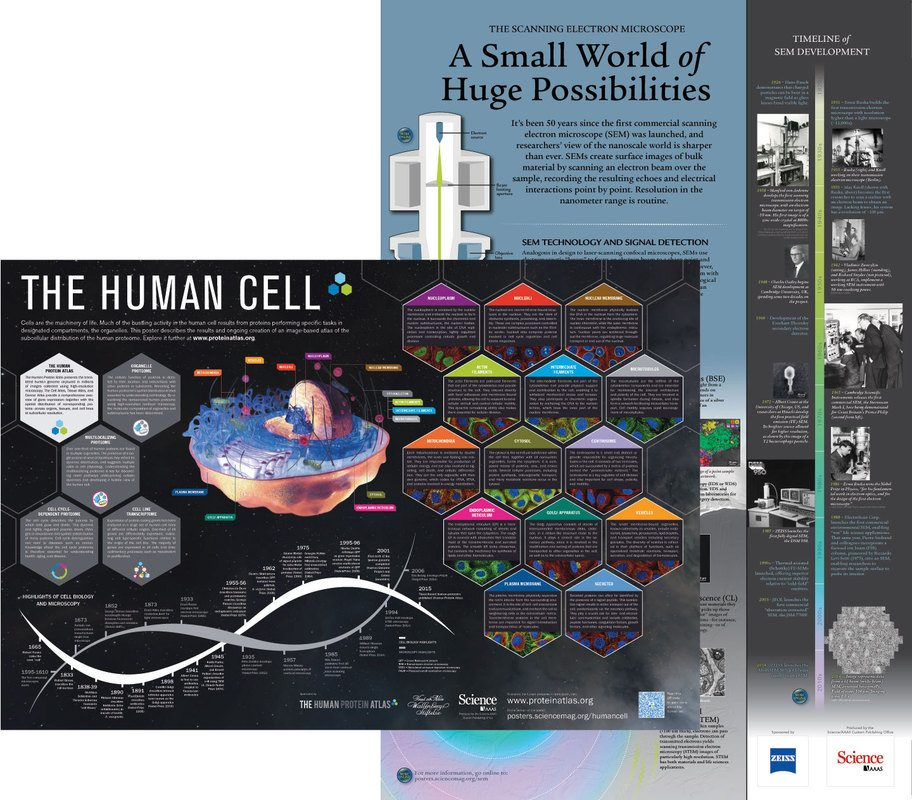 Posters - Science Magazine Advertising - sample advertising timeline