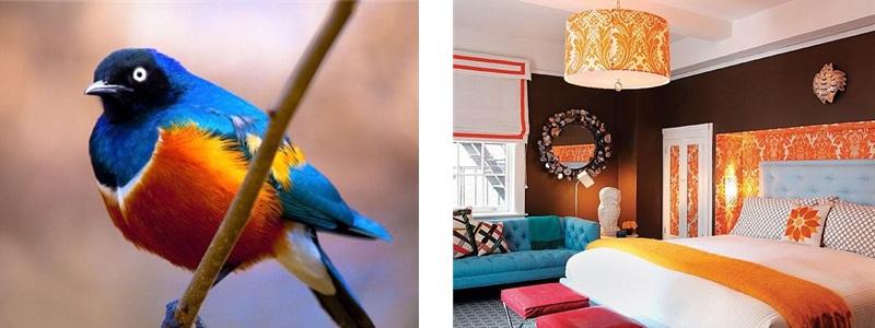 Interior Design Chennai, Aegam, Aegam Chennai, Home Styling India, Home Styling Chennai,Color Schemes