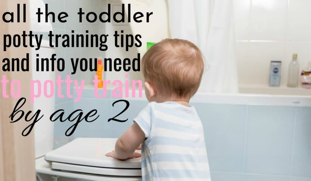 All The Toddler Potty Training Tips You Need To Potty Train By 2