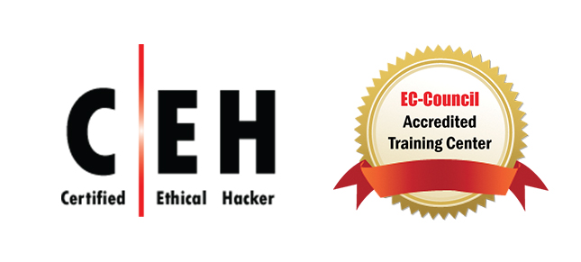 Certified Ethical Hacker (CEH) Training - Learn Hacking