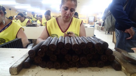 ATC union leader rolling cigars at the CubaNica Padrón cigar factory in Estelí (Photo credit: Sophie Hohenwarter)