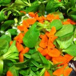 A light salad of sliced carrot and mache greens goes well with Dijon Mustard Dressing (Photo Credit: Adroit Ideals)