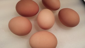 Remove the eggs to a cutting board (Photo Credit: Adroit Ideals)