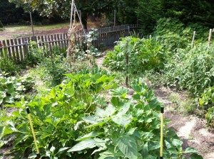 My father-in-law's garden at Delaware House (Photo Credit: Adroit Ideals)