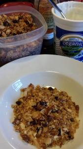 Serve your homemade granola with your favorite yogurt and honey (Photo Credit: Adroit Ideals)