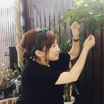 staff-hatazawa-Miki-Nagao