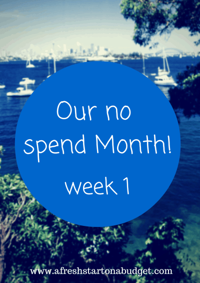 Our no Spend month: week one