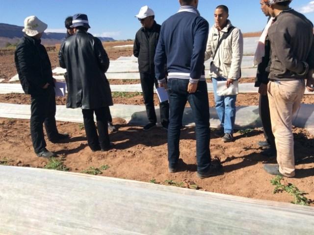 モロッコが抱える水不足という課題!政府の取り組みと農業生産者の対策方法から考えてみる!〜第3回〜