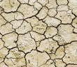 drought-711651