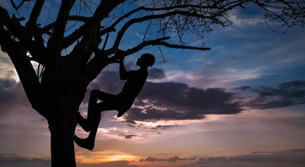 A young boy from the Hamer Tribe climbing a tree at sunset in Omo Valley, ethiopia