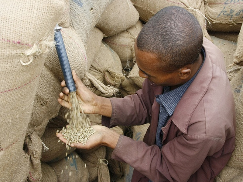 ethiopian-business-trade