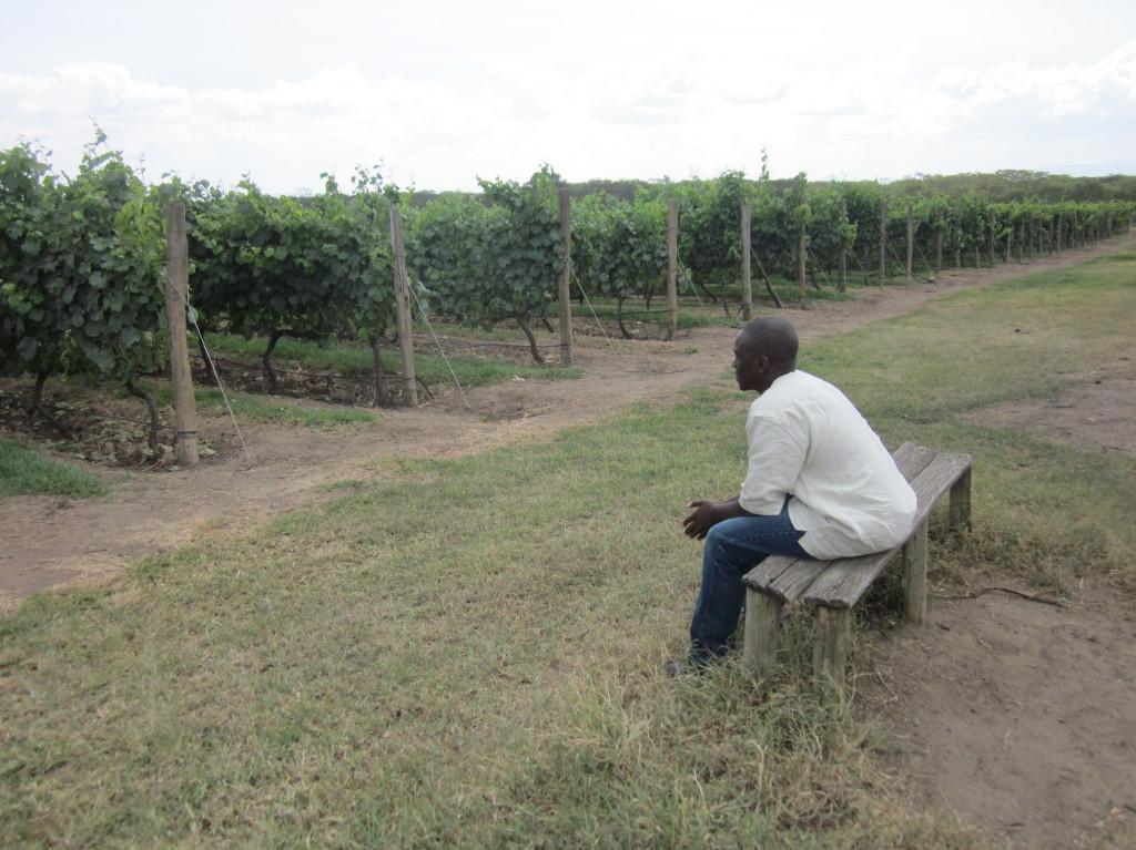 kenya-wines-1024x768