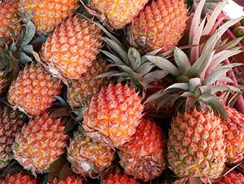 Prés de 283.5 kg d'Ananas ont été saisis à Bir Kassaa