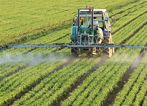 Plusieurs décisions au profit du secteur agricole à Monastir Agriculture