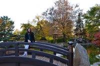 osaka japanese gardens wooded island jackson park chicago ...