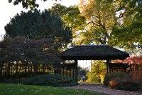 Osaka Japanese Gardens at Jackson Park  Agatha Kubalski