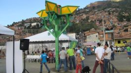 Flor potabilizadora en Medellín