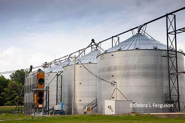 Dtn Grain Midday Weak Morning Trade Agfax