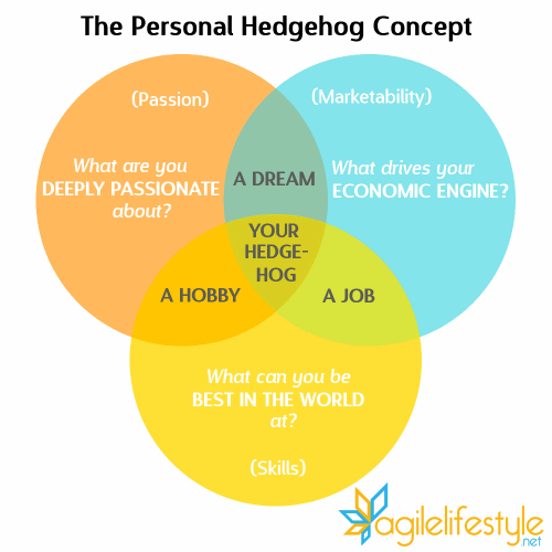 The Personal Hedgehog Concept 2.0