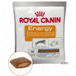 Royal Canin Giveaway
