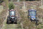 Driverless compact tractors perform fully autonomous spraying tasks at a Texas vineyard.