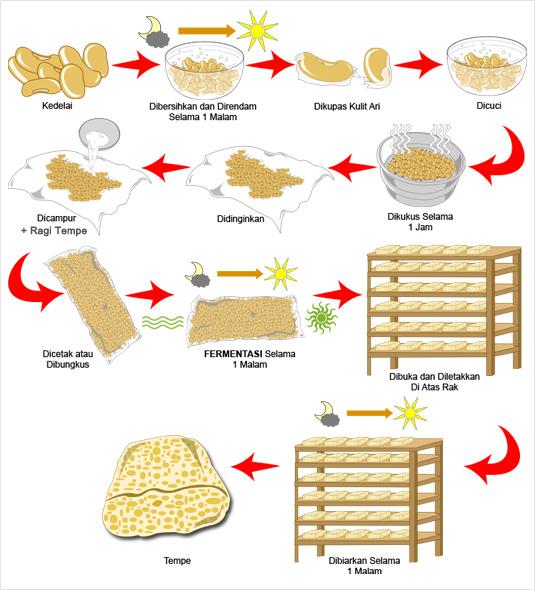 Makalah Tempe Makalah Sanitasi Makanan Slideshare Gus Gitulho Contoh Makalah Cara Pembuatan Tempe