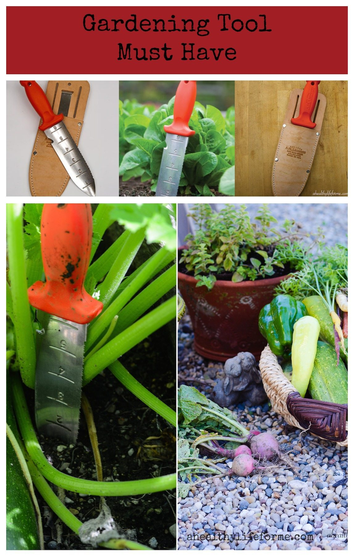 Gardening tool you will love a healthy life for me for Gardening tools must have