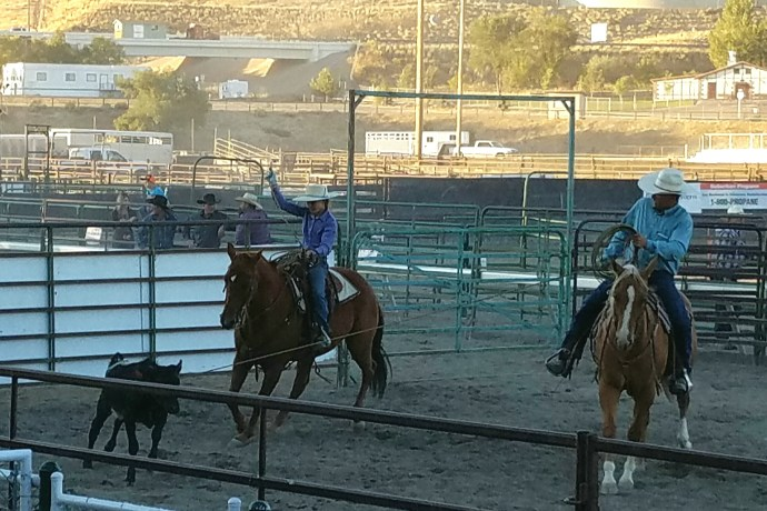 Clint and Carley Griffin roping in Elko, NV