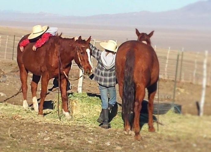 A Horseman's Wife girls and ranch horses a girl and her horse