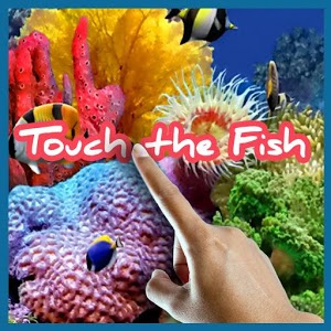 Touch the Fish Live Wallpaper - Android Informer. ****ALERT****We want to thank you for helping ...