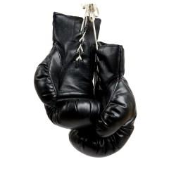 nyrkkeilyhanskat