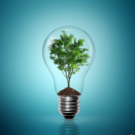 Earth-energy-with-a-tree-in-a-lightbulb