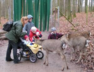 wildpark tripsdrill 300x229 Naromars Urlaubs Fakten 5