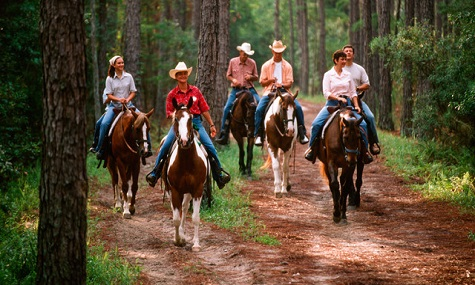 horseback riding  Walt Disney World Resort Check   Disneys Fort Wilderness Resort