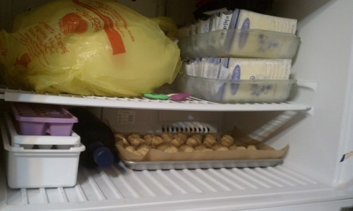 Our freezer consists of milk, a turkey, vodka and peanut butter balls...