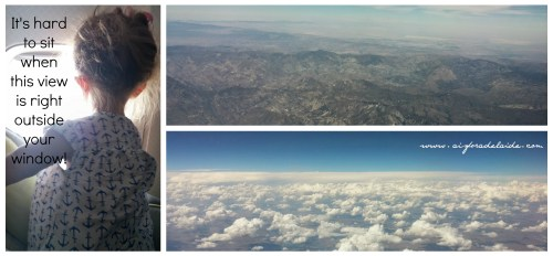 #aisforadelaide #travel #view #landscape #flying #americanairlines