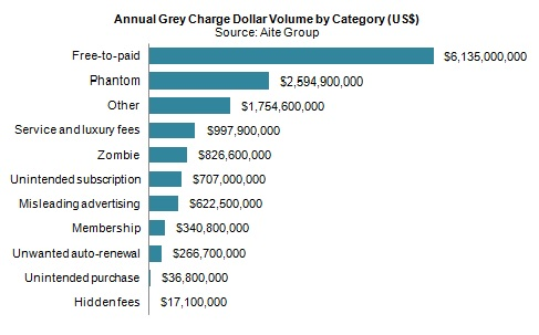 The Economic Impact of Grey Charges on Debit and Credit Card Issuers