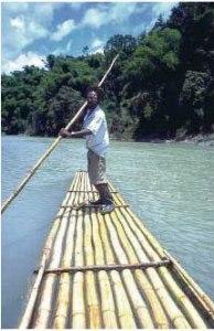 Rafting on the Rio Grande, Portland, Jamaica