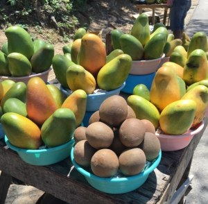 Top 5 Exotic Fruits of Jamaica