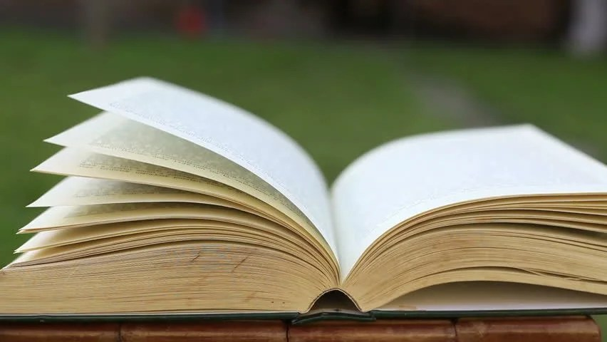 Open Book with Pages in Stock Footage Video (100 Royalty-free