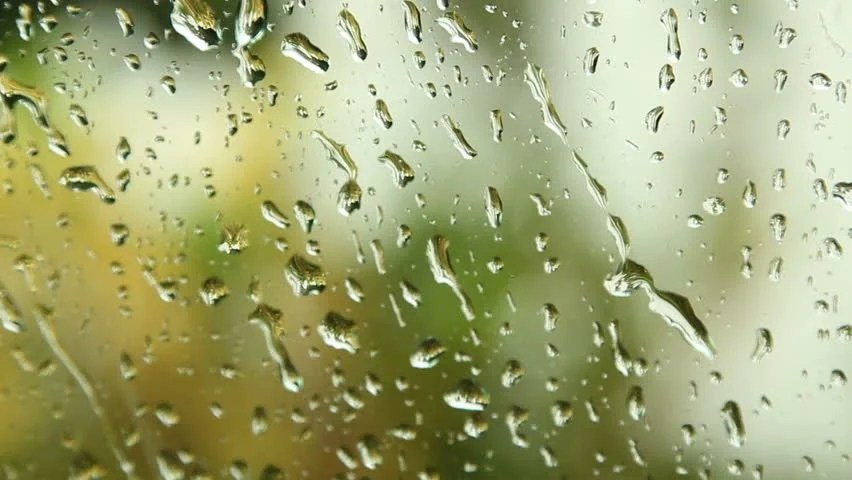 Falling Leaves Live Wallpaper Download Stock Video Clip Of Close Up Image Of Rain Drops Falling