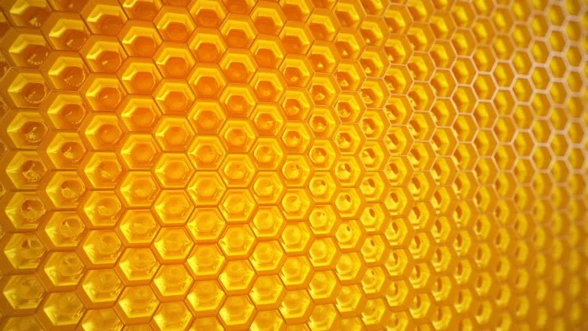 Bumblebee Car Wallpaper Download Honey Template Background Vintage Frame With Honey Set